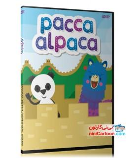 مجموعه آموزشی پاکا آلپاکا - Pacca Alpaca